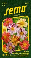 HOBBY, Květiny letničky - Jiřinka proměnlivá Fireworks, 9222 (Dahlia pinnata)