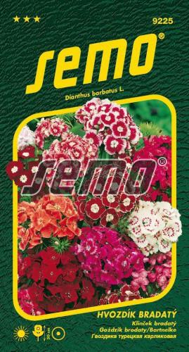 HOBBY, Květiny letničky - Hvozdík bradatý směs, 9225 (Dianthus barbatus)