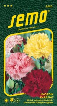 HOBBY, Květiny letničky - Hvozdík karafiát směs, 9226 (Dianthus caryophyllus)
