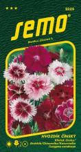 HOBBY, Květiny letničky - Hvozdík čínský směs barev, 9229 (Dianthus chinensis)