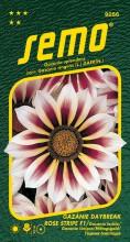 HOBBY, Květiny letničky - Gazánie zářivá Daybreak Rose Stripe, 9256 (Gazania splendens)
