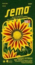 HOBBY, Květiny letničky - Gazánie zářivá Daybreak Red Stripe, 9257 (Gazania splendens)