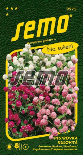 HOBBY, Květiny letničky - Pestrovka kulovitá směs, 9275 (Gomphrena globosa)