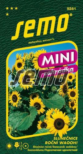 HOBBY, Květiny letničky - Slunečnice roční Waooh!, 9281 (Helianthus annuus)