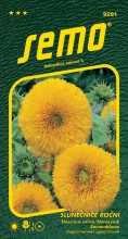 HOBBY, Květiny letničky - Slunečnice roční Teddy Bear, 9291 (Helianthus annuus)