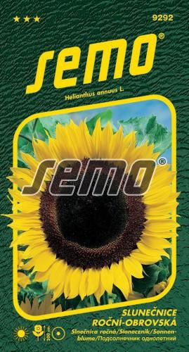 HOBBY, Květiny letničky - Slunečnice roční obrovská, 9292 (Helianthus annuus)