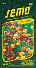 HOBBY, Květiny letničky - Slaměnka Bunter Bikini směs, 9301 (Helichrysum bracteatum)