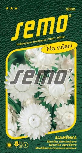 HOBBY, Květiny letničky - Slaměnka bílá, 9302 (Helichrysum bracteatum)