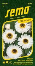 HOBBY, Květiny letničky - Smilek růžový (nesmrtelka) Pierrot, 9313 (Helipterum roseum)