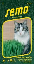 HOBBY, Květiny letničky - Tráva pro kočky, 9319 (Hordeum vulgare)