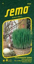 HOBBY, Květiny letničky - Velikonoční osení, 9320 (Hordeum vulgare)
