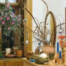 HOBBY, Květiny letničky – Velikonoční osení, 9320