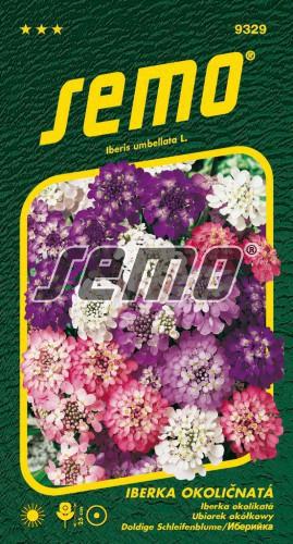 HOBBY, Květiny letničky - Iberka okoličnatá Fairy Mix, 9329 (Iberis umbellata L.)