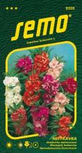 HOBBY, Květiny letničky - Netýkavka balsamina směs barev, 9335 (Impatiens balsamina)