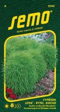 HOBBY, Květiny letničky - Cypřišek letní Kochie, 9345 (Kochia scoparia)