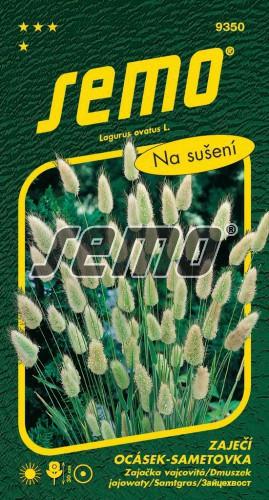 HOBBY, Květiny letničky - Zaječí ocásek (sametovka) sametovka, 9350 (Lagurus ovatus)