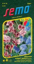 HOBBY, Květiny letničky - Hrachor vonný Crimson and Blue Ripple, 9357 (Lathyrus odoratus)
