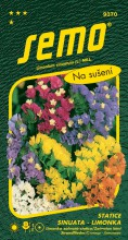 HOBBY, Květiny letničky - Statice sinuata (limonka) směs, 9370 (Limonium sinuatum)