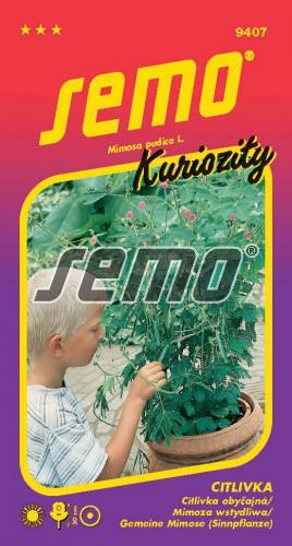 HOBBY, Květiny letničky - Citlivka, 9407 (Mimosa pudica)