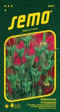 HOBBY, Květiny letničky - Černucha východní Transformer, 9431 (Nigella orientalis)