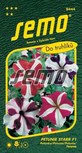 HOBBY, Květiny letničky - Petunie velkokvětá Star F1, 9444 (Petunia x hybrida)