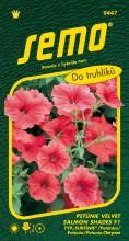 HOBBY, Květiny letničky - Petunie typ surfinie Velvet Salmon Shades, 9447 (Petunia x hybrida)