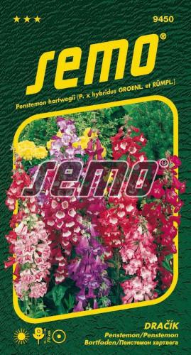 HOBBY, Květiny letničky - Dračík směs, 9450 (Penstemon hartwegii)