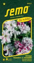 HOBBY, Květiny letničky - Petunie velkokvětá Pozdrav z Jaroměře, 9453 (Petunia x hybrida)