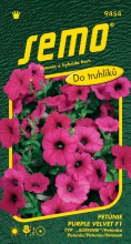 HOBBY, Květiny letničky - Petunie typ surfinie Purple Velvet F1, 9454 (Petunia x hybrida)