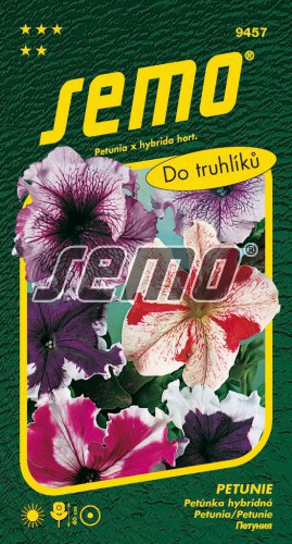 HOBBY, Květiny letničky - Petunie Superbissima směs, 9457 (Petunia superbissima)