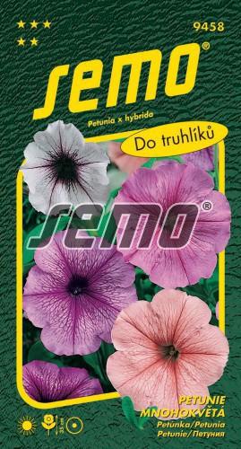 HOBBY, Květiny letničky - Petunie mnohokvětá směs s orchid hvězdou, 9458 (Petunia x hybrida)
