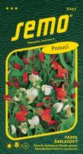 HOBBY, Květiny letničky - Fazol šarlatový červenobílý, 9465 (Phaseolus coccineus)