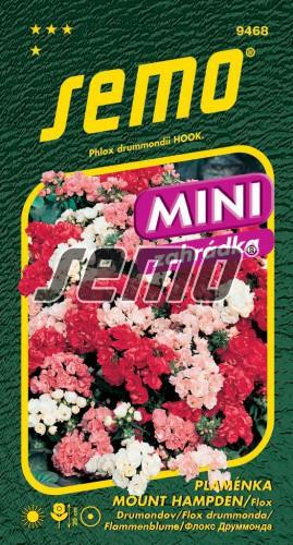 HOBBY, Květiny letničky - Plaménka (flox) Mount Hampden Mix, 9468 (Phlox drummondii)