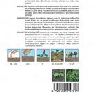 HOBBY, Květiny letničky – Spilant Toothache Plant, 9503