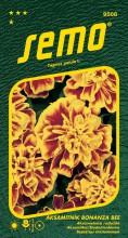 HOBBY, Květiny letničky - Aksamitník rozkladitý Bonanza Bee, 9508 (Tagetes patula)