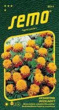 HOBBY, Květiny letničky - Aksamitník rozkladitý Tiger Eyes, 9511 (Tagetes patula)