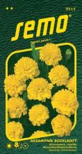 HOBBY, Květiny letničky - Aksamitník rozkladitý Petit žlutý, 9515 (Tagetes patula)