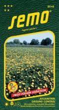 HOBBY, Květiny letničky - Aksamitník rozkladitý Ground Control, 9518 (Tagetes patula)
