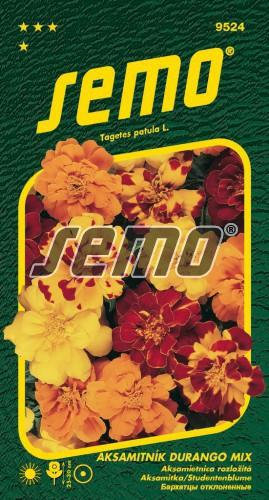 HOBBY, Květiny letničky - Aksamitník rozkladitý Durango Mix, 9524 (Tagetes patula)