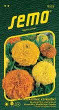 HOBBY, Květiny letničky - Aksamitník vzpřímený Double Grande směs, 9525 (Tagetes erecta)
