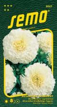 HOBBY, Květiny letničky - Aksamitník vzpřímený Kilimanjaro White, 9527 (Tagetes erecta)