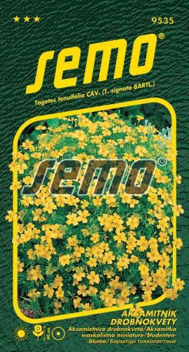 HOBBY, Květiny letničky - Aksamitník drobnokvětý žlutý, 9535 (Tagetes tenuifolia)
