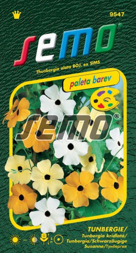 HOBBY, Květiny letničky - Tunbergie (Černooká Zuzana) směs s okem, 9547 (Thunbergia alata)