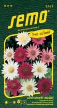 HOBBY, Květiny letničky - Suchokvět roční směs, 9565 (Xeranthemum annuum)