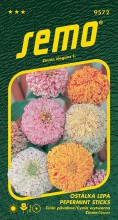 HOBBY, Květiny letničky - Ostálka lepá Pepermint Sticks, 9572 (Zinnia elegans)