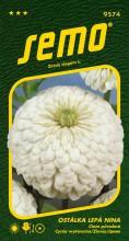 HOBBY, Květiny letničky - Ostálka lepá Nina, 9574 (Zinnia elegans)