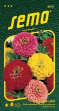 HOBBY, Květiny letničky - Ostálka lepá Geant de California, 9575 (Zinnia elegans)