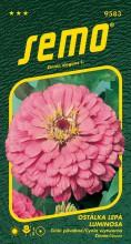 HOBBY, Květiny letničky - Ostálka lepá Luminosa, 9583 (Zinnia elegans)