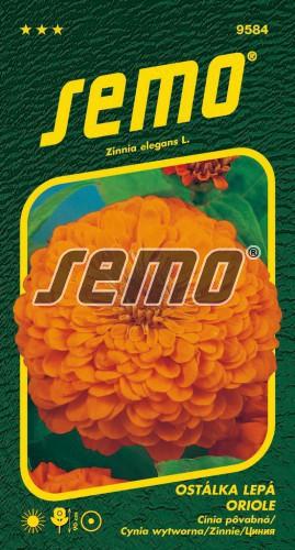 HOBBY, Květiny letničky - Ostálka lepá Oriole, 9584 (Zinnia elegans)