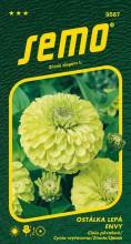 HOBBY, Květiny letničky - Ostálka lepá Envy, 9587 (Zinnia elegans)